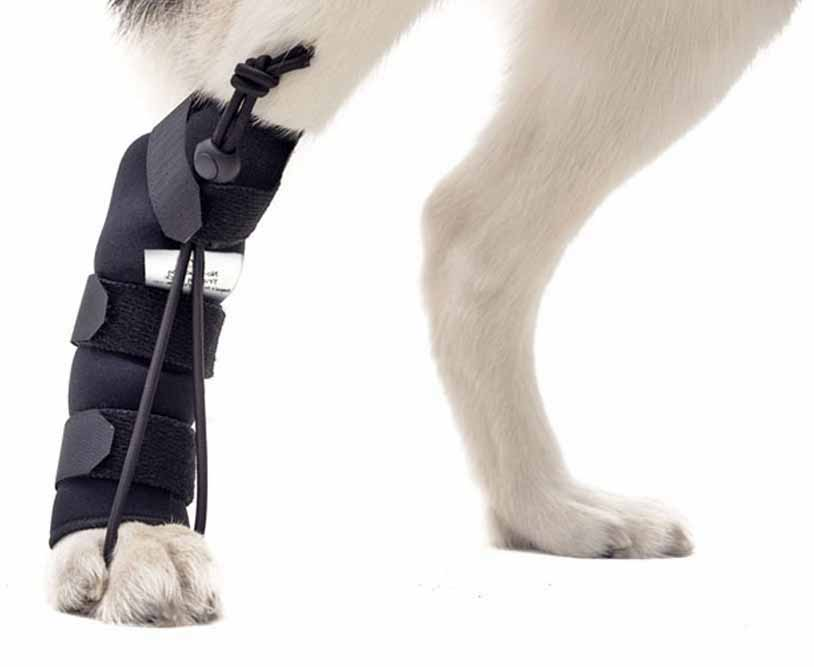 broken-legs-asc-left