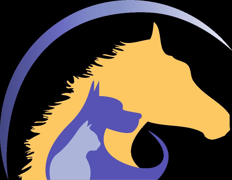 bvh-r-yel-horse-blue-swish2